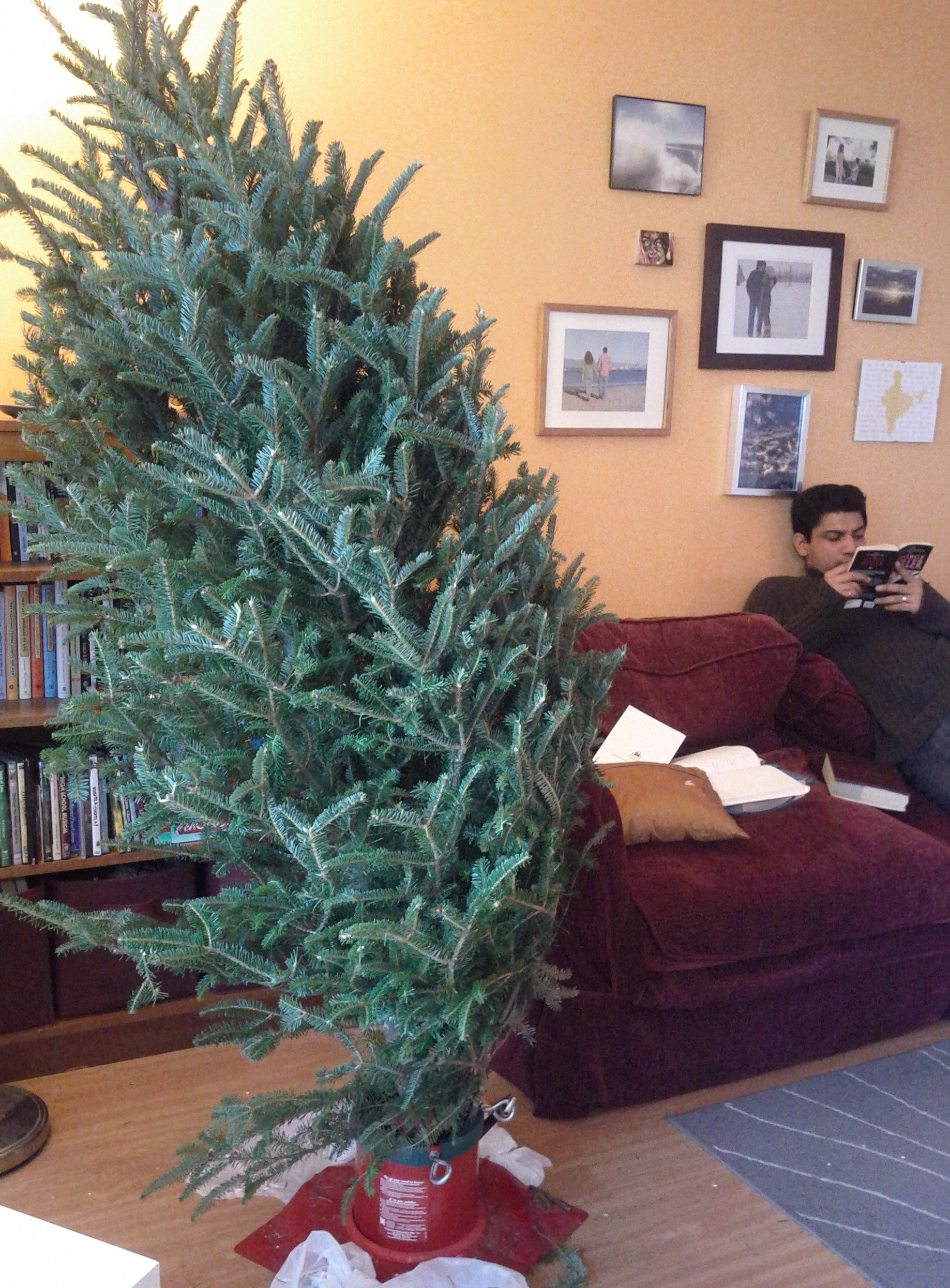 The Tale of the Crooked Christmas Tree and the Broken Stand | ESL ...