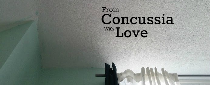 This is the corner of the ceiling near our bed. I spent a lot of time staring at walls, making this an apt banner for my mini-series of reflections from my 4+ months of concussion-recovery.
